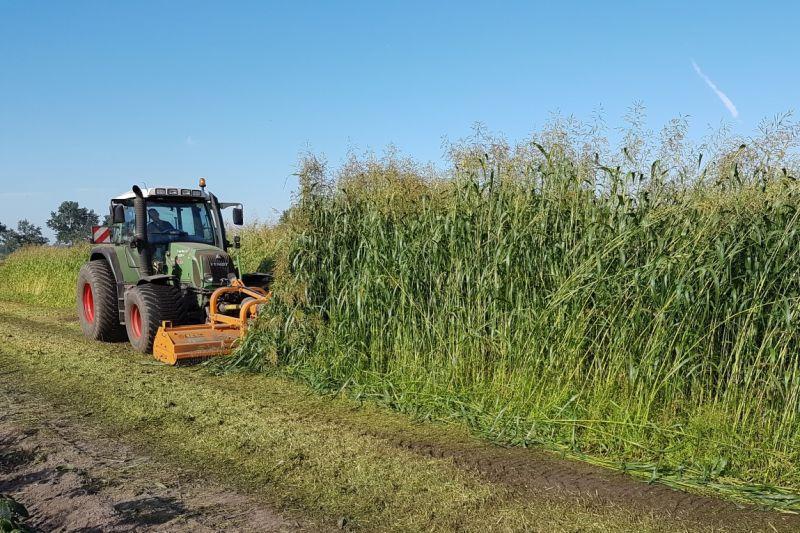 Na iedere teelt wordt de grond bemest door een combinatie van stalmest/wormenmest waarna er een groenbemester gezaaid wordt. Dit resulteert in veel organische stof, een luchtige grond en een gezond bodemleven.